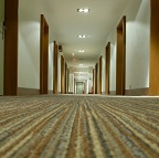 Carpet cleaning for Mapeley Estates